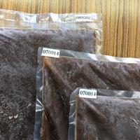【業務用】熟成黒たま ペースト(12袋入り) / 送料込 健康食品 単品 12kg