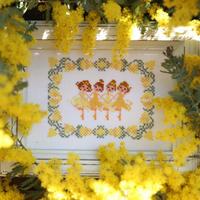 No.033 Fairy Mimosa