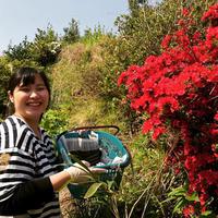 【能登の宝石】のとキリシマツツジの花びら染めストール +にがり石鹸セット