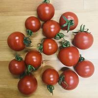 ミニトマト「ミニトマももちゃん」1袋(三須トマト農園:船橋市印内)