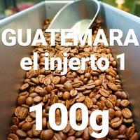 "GUATEMARA el injerto1 ""グアテマラ エルインヘルト農園"" 100g"