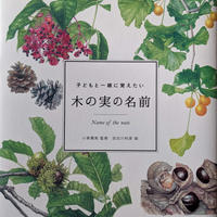 『木の実の名前』