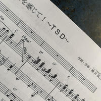 NaTaRi 楽譜 データ版  歌って学べるシリーズ①『和音を感じて〜TSD〜』