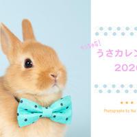 ちっちゃな!うさカレンダー2020