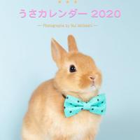 おっきな!うさカレンダー2020