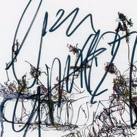 "[Hirau] Signed audio-CD  ""Unutella"""