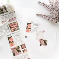 英字とお花のマスキングテープ pink [CT081]