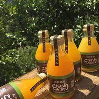 おまかせ12本SET)100%果汁しぼり 味比べ12本SET*内容は時期により異なります 送料無料