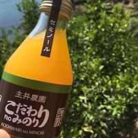 【セミノール】こだわりのみのり100%果汁しぼり (12本入り) 無添加