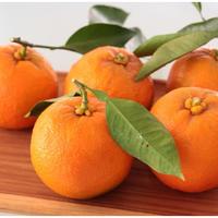 橙, 葉付き  (ポン酢にドレッシングに正月の飾りに) ,送料無料, ,お届け先ギフト指定可能 12月10日位から発送