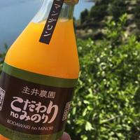 【カラマンダリン】こだわりのみのり100%果汁しぼり (12本入り )無添加