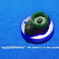 aromashima ワックスサシェ