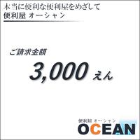 ご請求金額 ¥3,000(税別)