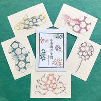 水玉海洋生物 絵葉書5枚セット/set of 5 postcards 'dotty sea creatures'