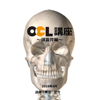 OCL講座【頭蓋骨編】2枚組