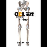 OCLストレッチ講座【下肢編】1枚組