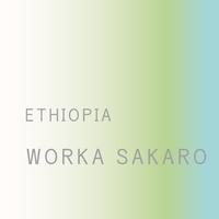 【エチオピア】ウォルカサカロ(浅煎り)- 200g