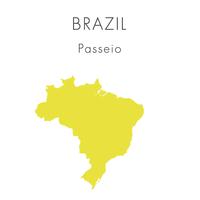 【ブラジル】パッセイオ - 100g