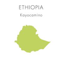 【エチオピア】カヨカミノ - 200g
