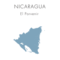 【ニカラグア】エル・ポルヴェニール - 100g