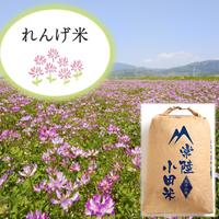 白米27kg (れんげ農法米)