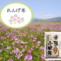 白米5kg (れんげ農法米)