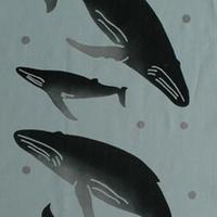 手ぬぐい ザトウクジラ