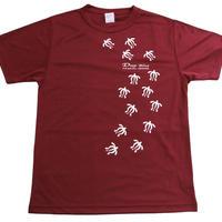 Tシャツ カメ(バーガンティ)