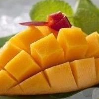 化粧箱入り九州産アップルマンゴー 1玉×2ケース