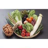 九州産】採れたて野菜とこだわりの地卵のセット(野菜10~13品・卵20個)