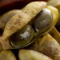 【10月限定】丹波たぶち農場黒枝豆さやのみ5kg【篠山市認定販売所】