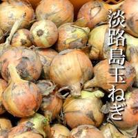 淡路島産たまねぎ(小山田村農場)【特別栽培】1kg(約3~5個)