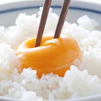 良質卵おはたま10個(割れ保証2個含む)【常温 バラorパック】