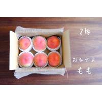 【家庭用】 桃  2kg 送料は別途かかります。