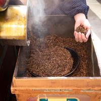 かさねほうじ茶40g・自家焙煎ほうじ茶40g - 炒りたて定期便(1ヶ月毎/ポスト便)