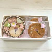 完売🌸販売終了です。季節限定 🌸桜セット (クッキー缶 と桜マドレーヌ)