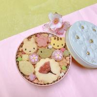 🌸期間限定 🌸桜のクッキー缶