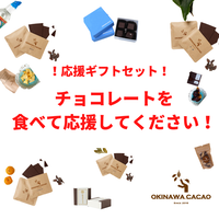 応援ギフト Aセット OKINAWA CHOCOLATE 4種BOXとドライパイナップル 【送料込】