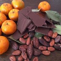 【年間購入・定期便月1回プラン】チョコレート&特典コンパクトセット(送料込)