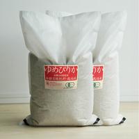 「平成30年北海道産」生産者限定・産直米 有機JAS 北海道産 無農薬・無化学肥料 はるか農園 ゆめぴりか 10kg(5kg×2)玄米