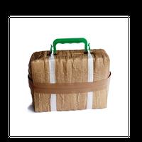 beta post / CARTON BOX BAG WITH PLASTIC HANDLE
