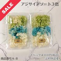 【A-8】アジサイアソート (花材セール)