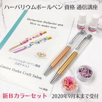 【講師のみ購入可】Bカラーハーバリウムボールペン資格 開講用キット