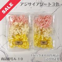 【A-10】アジサイアソート (花材セール)