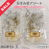 【K-1】かすみ草アソート(花材セール)