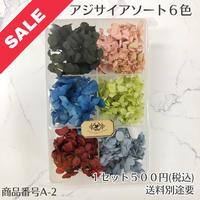 【A-2】アジサイアソート (花材セール)