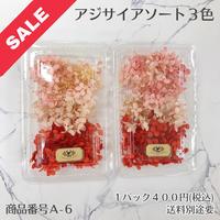 【A-6】アジサイアソート (花材セール)