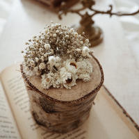 natural 白樺 ring  pillow