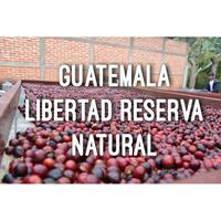 200g【グァテマラ/GUATEMALA ラボルサ ナチュラル】深煎り