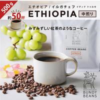500g【エチオピア/ETHIOPIA】中煎り  ウォッシュド
